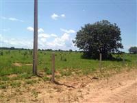 Fazenda Para Plantio de Soja no MT - 450ha
