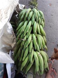 Compro banana prata em caixas