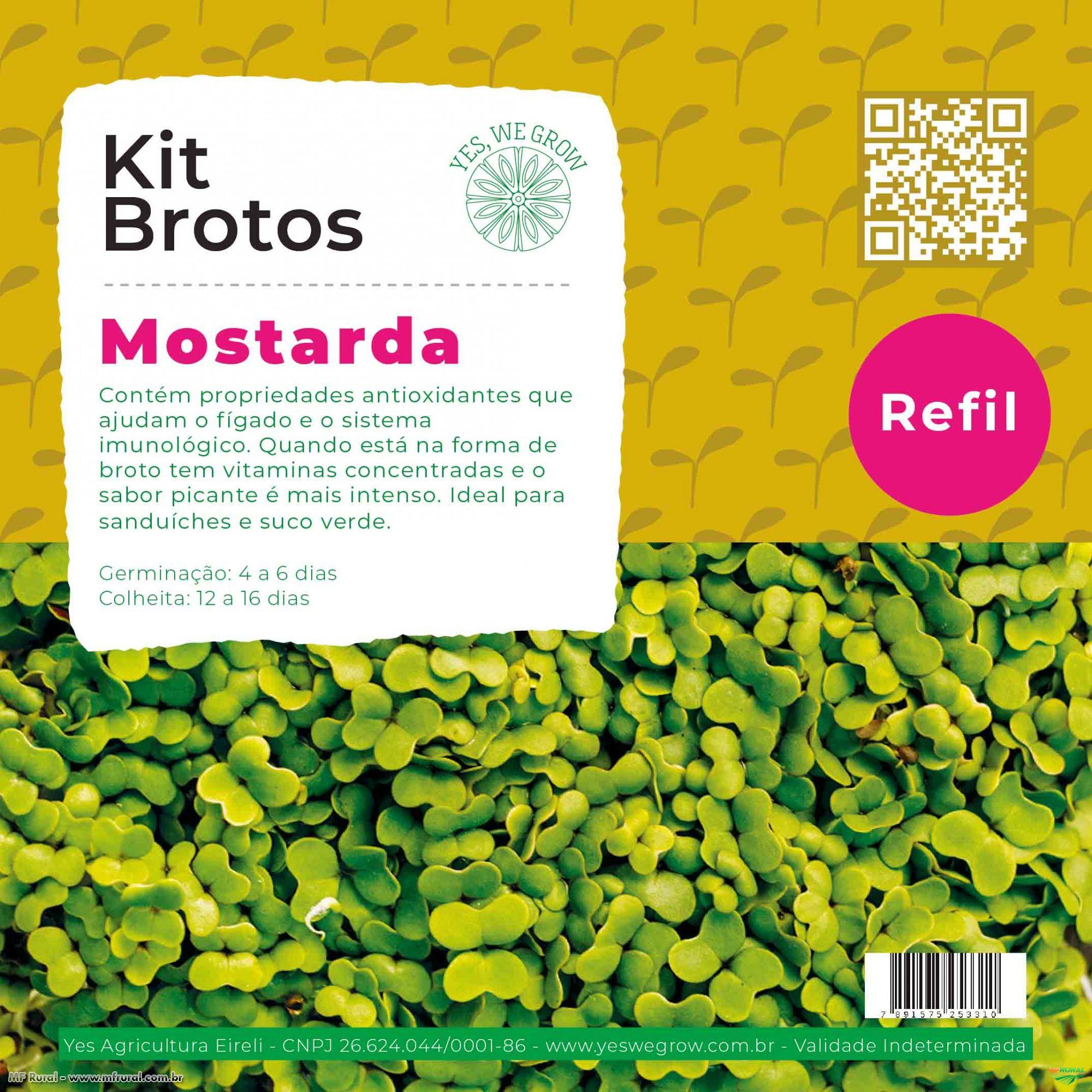 Refil para Kit Brotos Microverdes Mostarda