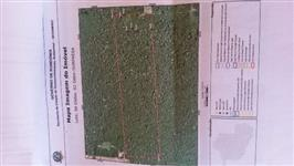 97 hectare terra virgem