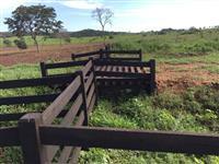 Arrendo Fazenda no Mato Grosso