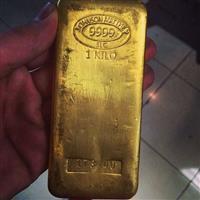 Procuro sócio investidor para garimpo de ouro.