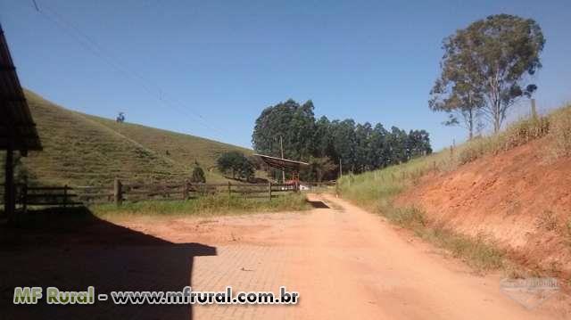 FAZENDA DE 120 ALQUEIRES PARA CRIAÇÃO DE GADO LEITEIRO DE ELITE