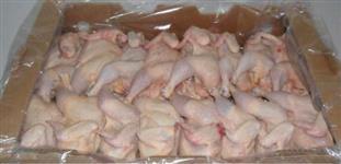 Exportação de pé pata e partes de frango