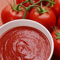Investidor molho de tomate e temperos