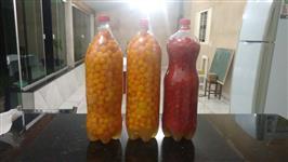 Venda de pimenta