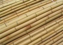 Bambu tratado  para móveis, construções e artesanato em geral