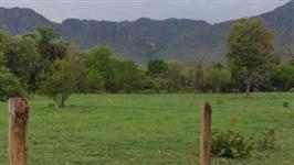 Fazenda com 680 alq Tocantins