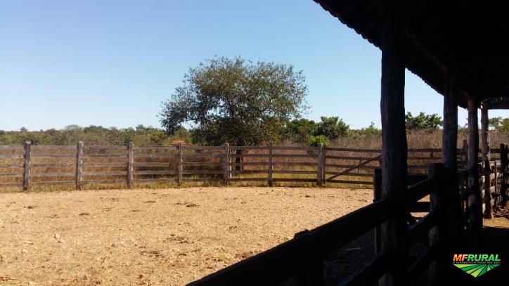 Fazenda com área de 400alq de 4.84ha