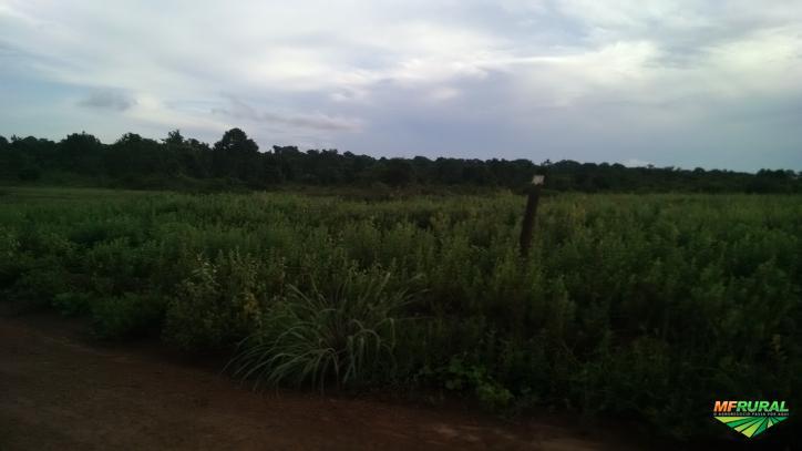 Magnífica Fazenda em Santana do Araguaia -Pa !