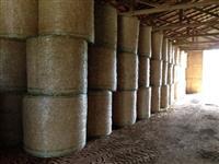 Palha de aveia e trigo