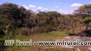Parceria para investimento em sitio em Alagoinhas Bahia