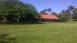 Propriedade Rural com Seringueira em Produção