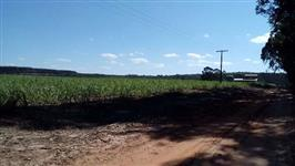 Gleba de terra com excelente localização, próxima a cidade, já com energia elétrica e água.
