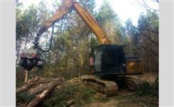 Harvester conjunto de cabeçote Logomax 5000D e escavadeira Hyundai 160 LC7