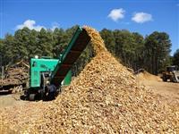 Cavacos de Madeira para Exportação.