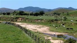 Fazenda totalmente estruturada para criações de gado de corte e leite em Silva Jardim - RJ