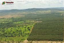 Fazenda em Unai / Minas Gerais a 12 km da cidades