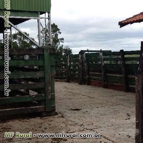 Linda FAZENDA em ITAPETININGA / localização priveligiada apenas 4 km da RAPOSO TAVARES