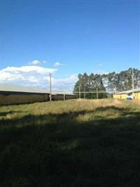 Vendo Barracão de granja desativado, em estrutura metálica, medindo 125 m x 12