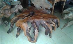 Mesa de centro madeira rustica tronco raiz demolição