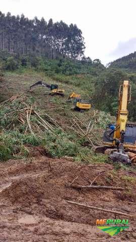 Prestação de serviços florestais