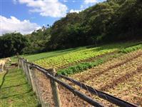 Sitio de 5 hectares em Sabara - MG