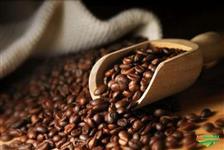 Café Torrado 1kg
