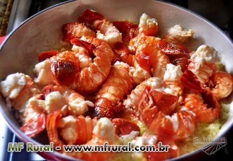 Camarão lagostim pitu rosa vermelho envio Brasil todo!!