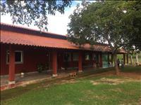 FAZENDA – 250 hectares – JEQUITIBÁ (MG)