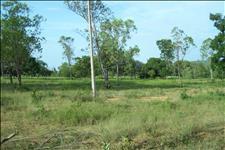 FAZENDA - 350 hectares - PARAOPEBA (MG)