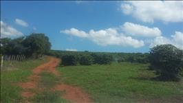 FAZENDA A VENDA - 85 hectares - REGIÃO HELIODORA (MG)