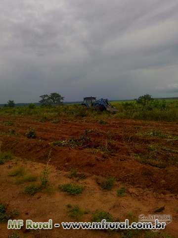 Fazenda a venda em Guaraí TO