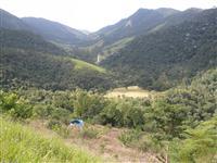 Fazenda de frute-cultura situada no Sana RJ a venda completa