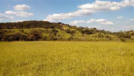 Fazenda 93ha em Esmeraldas - 60km de BH