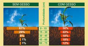 Gesso Agricola PIAUI