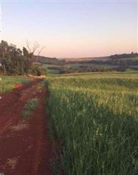 Fazenda - Sítio de 68 alqueires