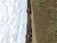 SD colheitas