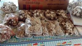 Gogumelos comestivel