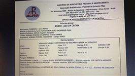 Jumenta Prenha e Registrada na ABCJPÊGA
