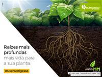 Gesso Agrícola - Representante Nutrigesso MS, MT, GO, MG, SP e PR.