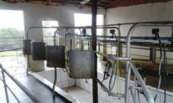 Alugo Chácara com leiteiria completa, pastagem e casa para residência.