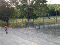FAZENDA PARANTHAM - BAHIA