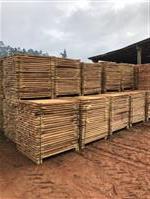 Madeira de Pinus