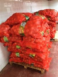 Vendo Cebola em sacos