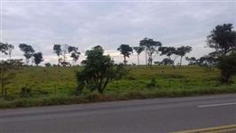 Fazenda soja/pecuária em Padre Bernardo/GO