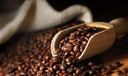 Café Arábica e Conilon Tipo Exportação