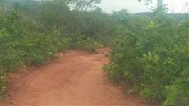 Compensação Ambiental  ICMBio - Bioma Cerrado