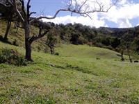 Arrendo fazenda de 600 hectares no norte de MG - terra boa com muita água - pagamento mensal- barato