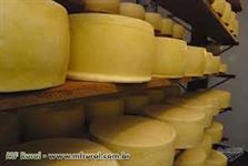 Compro queijo parmesão e mussarela